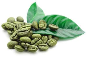green coffee bean antioxidant