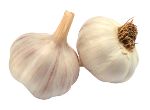 Garlic to boost the immune system
